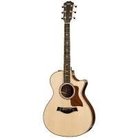 picture/taylorguitars/a801001111000077000_p01.png