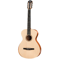 picture/taylorguitars/c000035000004811000.png