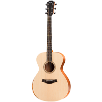 picture/taylorguitars/f000033000000011000.png