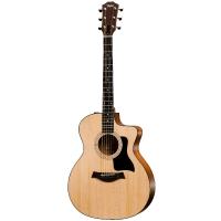 picture/taylorguitars/f100002111005151000_p01.png
