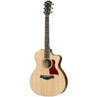 picture/taylorguitars/f200002111003290000.png