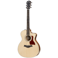 picture/taylorguitars/f200002111004872000_p01.png