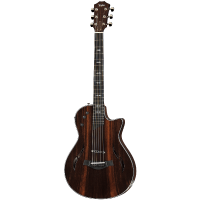 picture/taylorguitars/t5zprorwltd.png