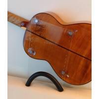 picture/trekel/guitarliftbigplatetransparent.jpg