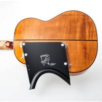 picture/trekel/guitarlifthalfplate.jpg