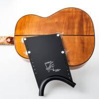 picture/trekel/guitarliftmediumplate.jpg