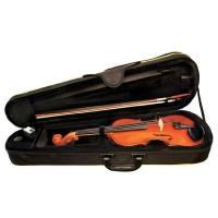 picture/trekel/violinegewasetallegro12.jpg