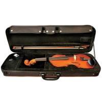 picture/trekel/violinegewasetideale12.jpg