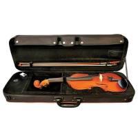 picture/trekel/violinegewasetideale34.jpg