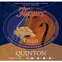 picture/trekel/violoncellosaitenfisomaquinton14.jpg
