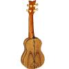 picture/meinlmusikinstrumente/lizardsogb_p02.png