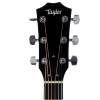 picture/taylorguitars/f100000111005151000_p06.png