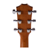 picture/taylorguitars/f100002111015151000_p07.png