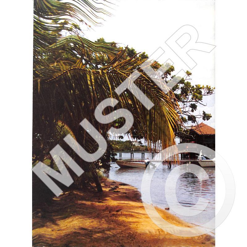 Notenbild für GNS 02306 - RAPSODIA BAMBUCA 4 OP 7/2