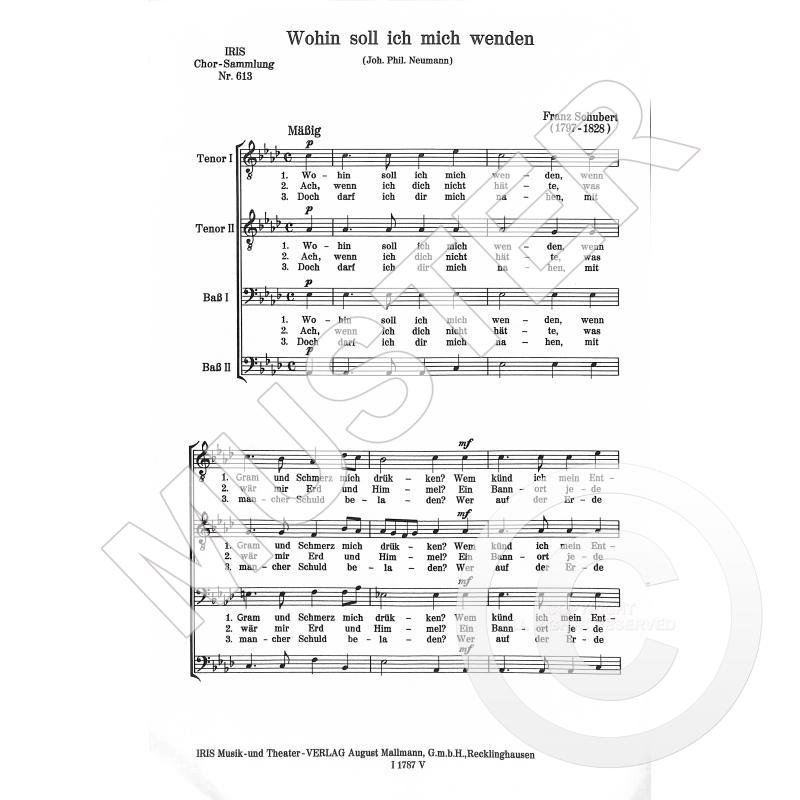 Titelbild für IRIS 613-13 - WOHIN SOLL ICH MICH WENDEN